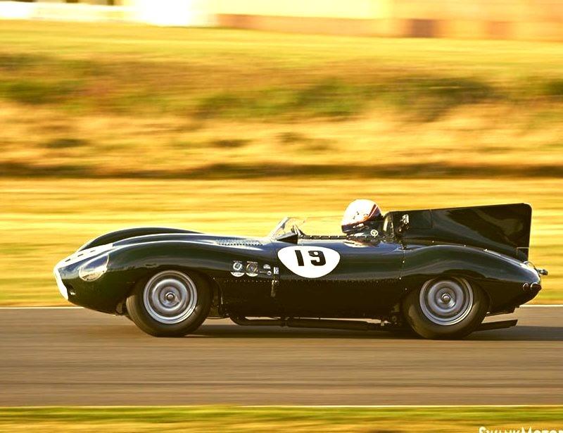 55 Jaguar D-type